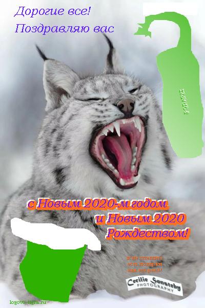 NY-2020
